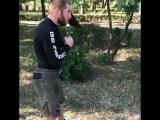 Утренняя тренировка Мурада Мачаева