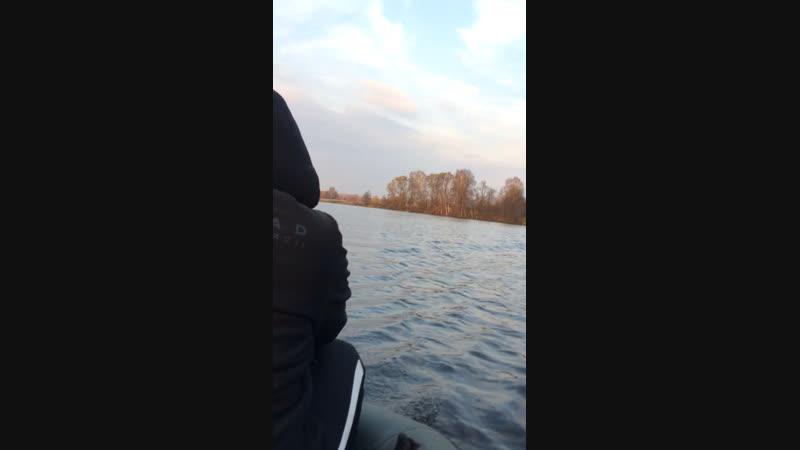 Рыбалка р.Мича