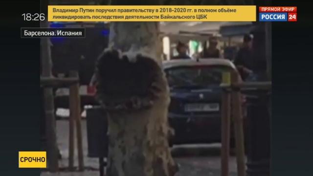Новости на Россия 24 • Пикап въехал в толпу на пешеходной улице Барселоны. Первое видео с места ЧП