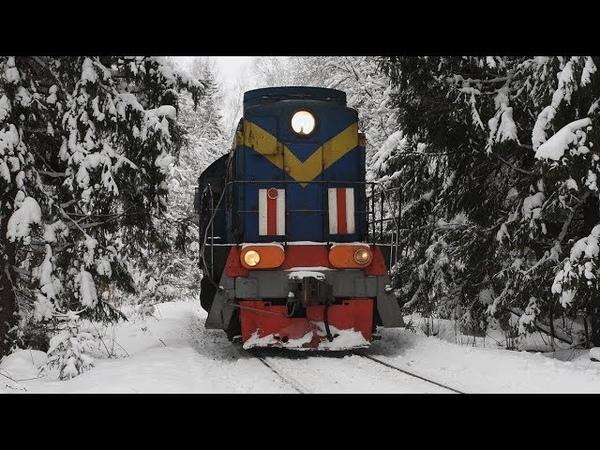 Зимняя сказка ТЭМ2 3347 в туннеле из заснеженных елей Подъездной путь от ст Бужаниново