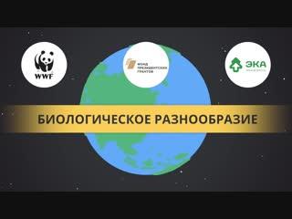 Всероссийский экологический урок Сохранение редких видов