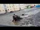 Мужики дерутся из за Украины