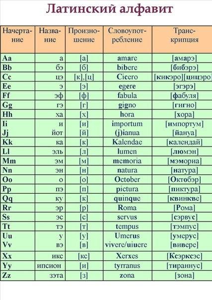 Как самостоятельно изучить латинский язык
