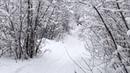Парк Победы. Очень Красиво. Зима Творит Чудеса. 4K