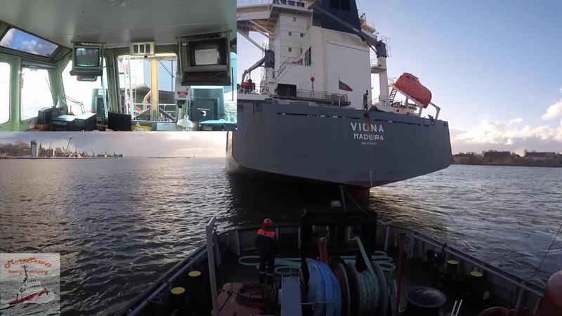 Азимутальный буксир Торнадо в работе Швартовка контейнеровоза в Балтийске