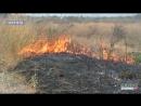 Понад 600 пожеж в екосистемах: чернігівців попередили про болячки від диму