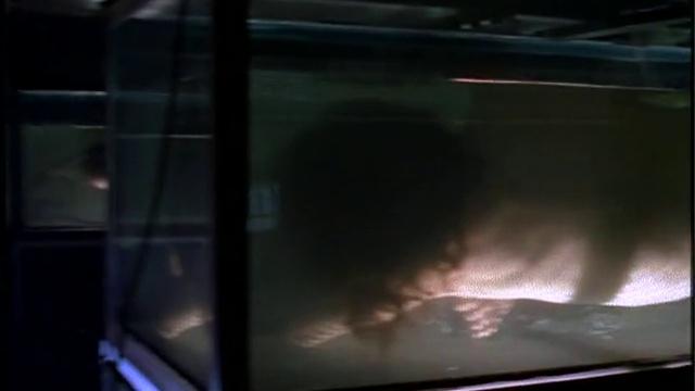 X-Files s01e 24 «Колба Эрленмейера»