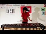 Super Mario Bros. on Marimba (with 4 Mallets) by Aaron DeWayne