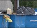 Чтобы не допустить мусорную революцию в Лесосибирске, старые баки меняют на новые