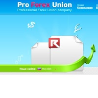 Professional forex union