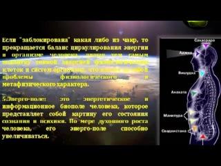 Работа КФС с биоэнергетикой человека.