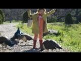 «Мы купили зоопарк» (2011): Международный трейлер №2 (дублированный)
