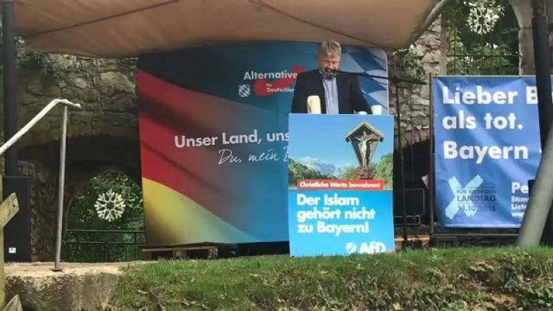 Prof Dr Jörg Meuthen AfD rechnet knallhart mit der Presse und den Altparteien a