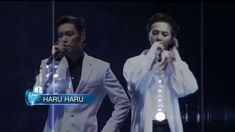 B.I.G.B.A.N.G ACOUSTIC Haru-Haru - Concert 0TO10