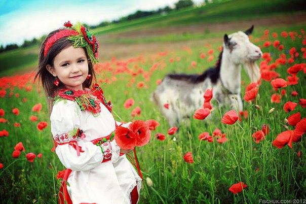 Просмотр темы - Государство - Український випускний 2014