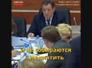 2019 год. Депутат Госдумы, узнав, что больше нечего облагать налогами, просто пнул собаку