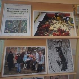 В Таганроге состоялось открытие фотовыставки «Пернатые друзья Приазовья»