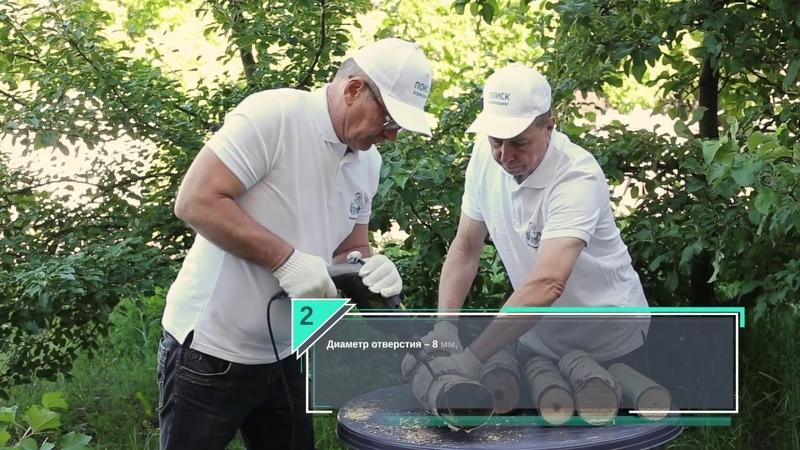 Как вырастить грибы из мицелия? Советы опытных агрономов.
