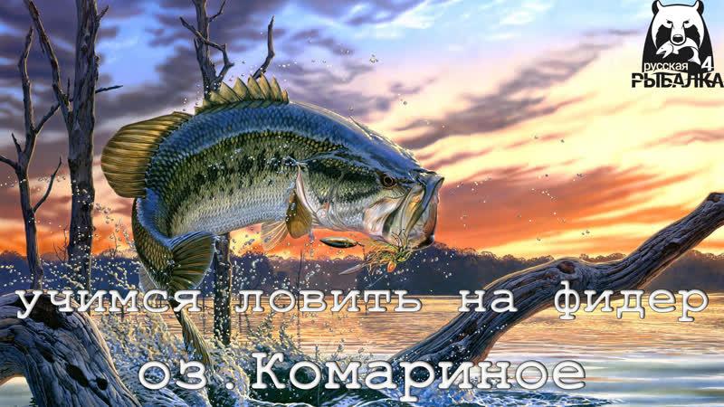Русская Рыбалка 4 ► Учимся ловить на Фидер3