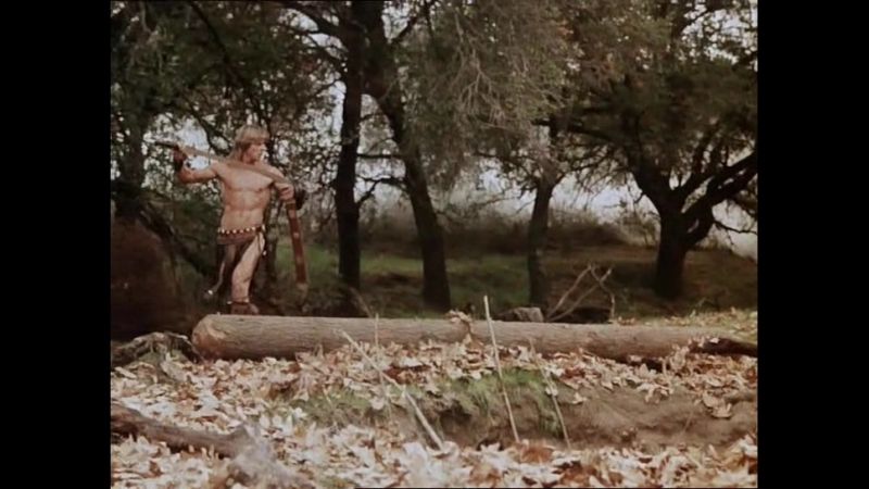 Повелитель зверей \ The Beastmaster (1982)
