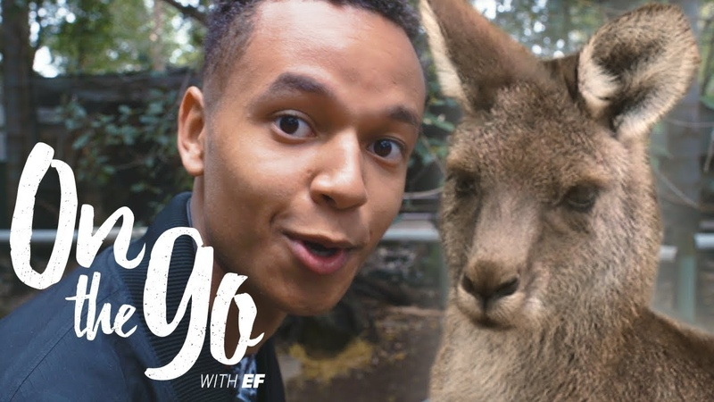Liam jumps in with the Kangaroos in Sydney – On the go with EF 60