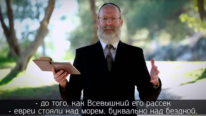Рав Моше Лебель о недельной главе Бешалах