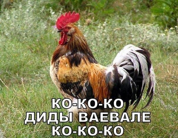 """Во Львове сами определяют, что праздновать, - """"Свобода"""" ответила на обвинения Азарова в нацизме - Цензор.НЕТ 3636"""