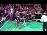 День в истории бокса -13 ноября 1985 - первый бой Тайсона без Каса.