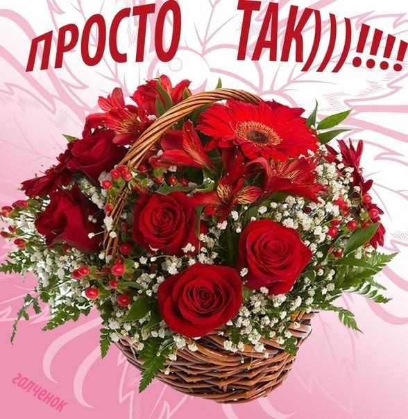 Цветы для танюшки для настроения картинки