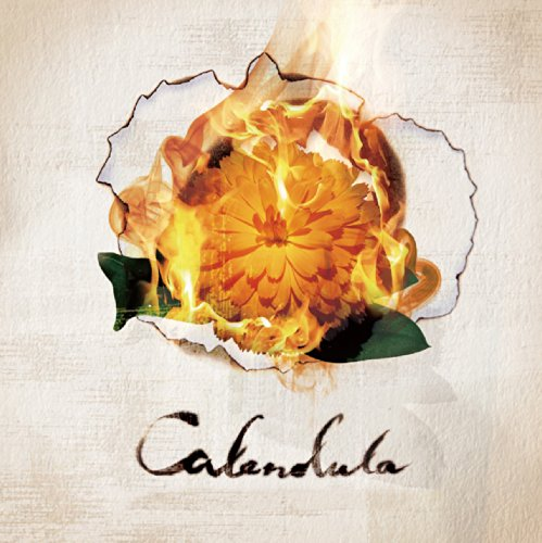 A Crowd Of Rebellion - Calendura (2014)