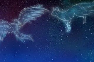 De l'Aide | ft. Dance des Papillons PmM3wsiT1Ao