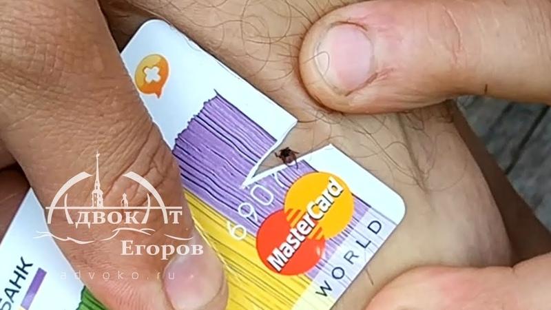 Как вытащить клеща пластиковой картой How to Remove a Tick