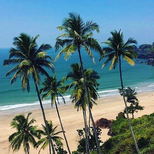 Туры в Гоа на 12 ночей от 24700 c человека в октябре