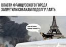 Дмитрий Поляченко фото #30