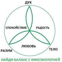 Картинки по запросу кинезиология