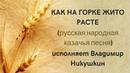 КАК НА ГОРКЕ ЖИТО РАСТЕ русская народная казачья песня ЗАТЕЯ сольное народное пение