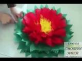 Женские Хитрости (vk.com/womantrlck) гигантские цветы из бумаги