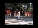 Shaolin Luohan 18 hands 少林罗汉十八手