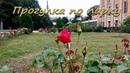 Парк в последние дни лета. Ботанический сад. Санкт-Петербург. Botanical Garden. St. Petersburg.