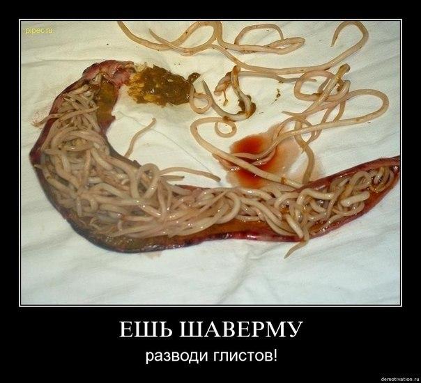 имбирь от паразитов в организме человека