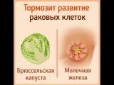 Продукты, похожие на ту часть тела, для которой они полезны