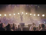 Cage The Elephant - Come A Little Closer (Unpeeled) (Live Video)
