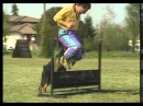 Собаки от А до Я - Дрессировка и Выучка (Фильм от ASHPIDYTU в 1996 Часть 1)