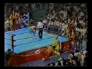 1992.07.04 - Chris Youngblood/Mark Youngblood vs. Richard Slinger/Sunny Beach [FINISH]