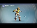 Destiny_20180130 YELLOW-BLACK TITAN vers40. znak whoa there .
