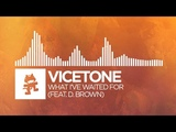 Progressive House - Vicetone - What I've Waited For (feat. D. Brown) Official Lyric Video