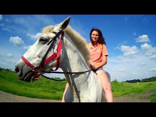 Настя купается с лошадью
