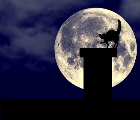 как выглядит сегодня луна фото