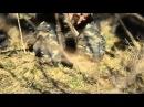 Як в бою робити окоп Інструктаж від Степової Сотні Інгульської паланки