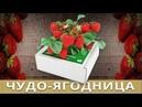 Чудо-ягодница «Сказочный сбор»! Клубника